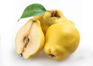 Le coing, un fruit d'automne par excellence