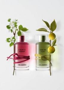 ParfumsMatieresKarlLagerfeld