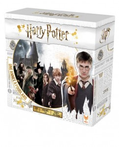 Topigames-image-produit-Harry-Potter-555x686