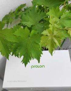 Prolon1