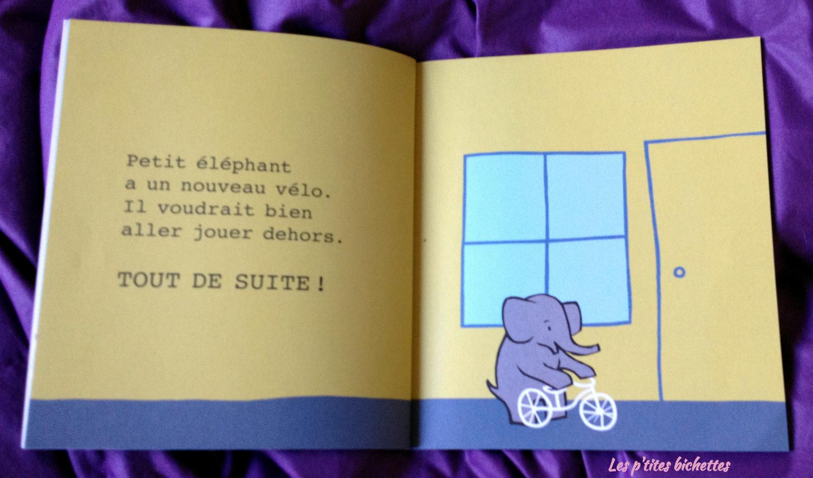 petit éléphant3