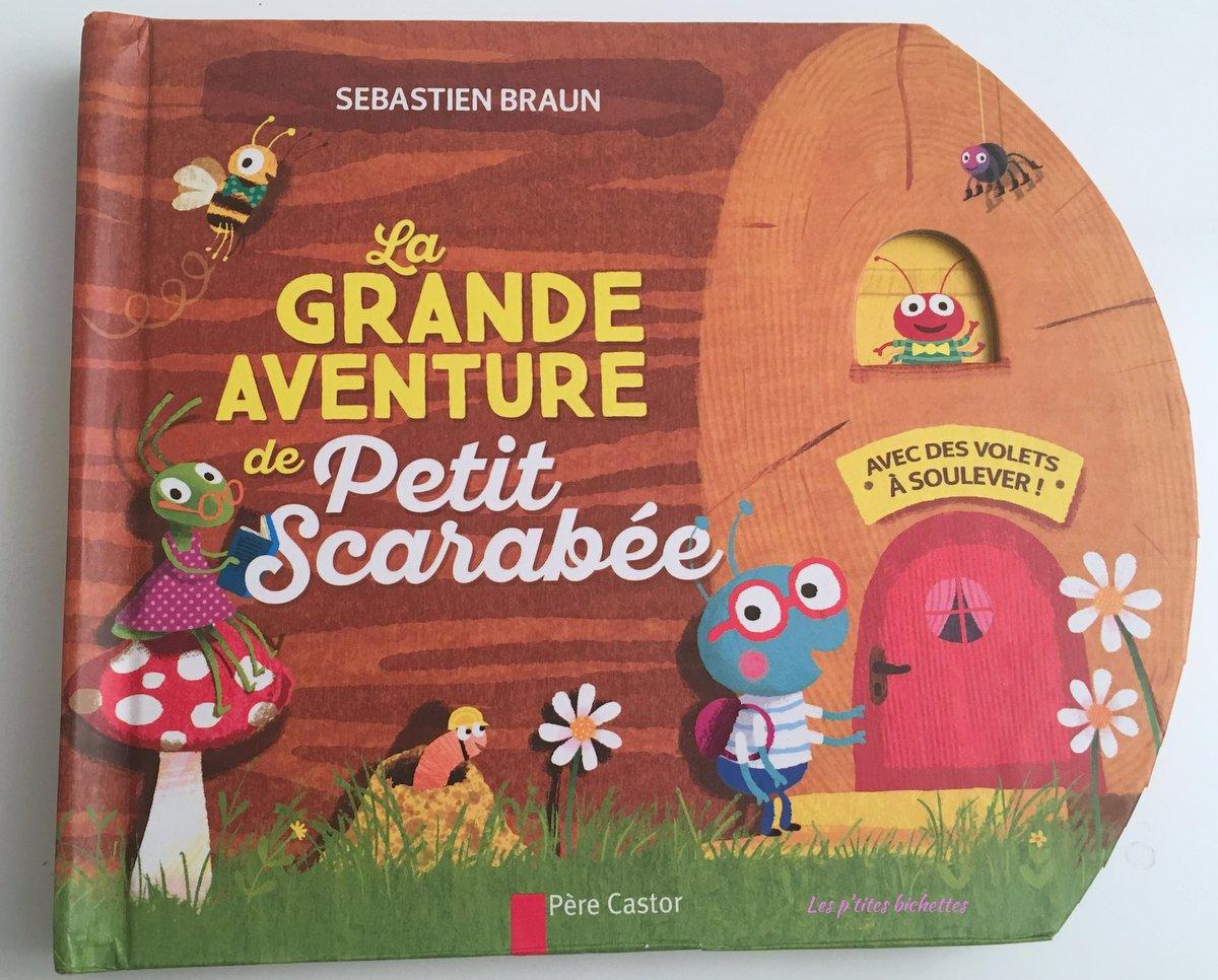 la-grande-aventure-du-petit-scarabee
